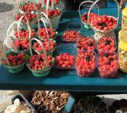 Лесные ягоды и грибы