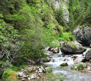 речка Яломичоара