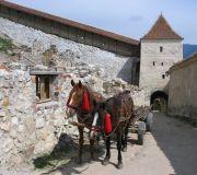 крепость Рышнов вход для телег
