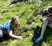 фотографируем карпатский рододендрон